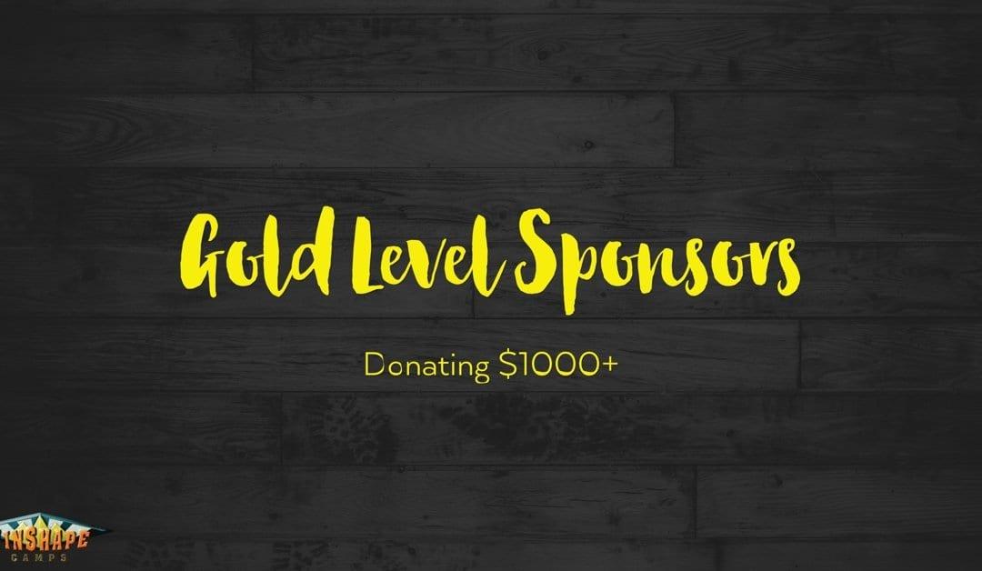 GOLD LEVEL SPONSORSHIPS – Winshape Camp Gaffney 2016